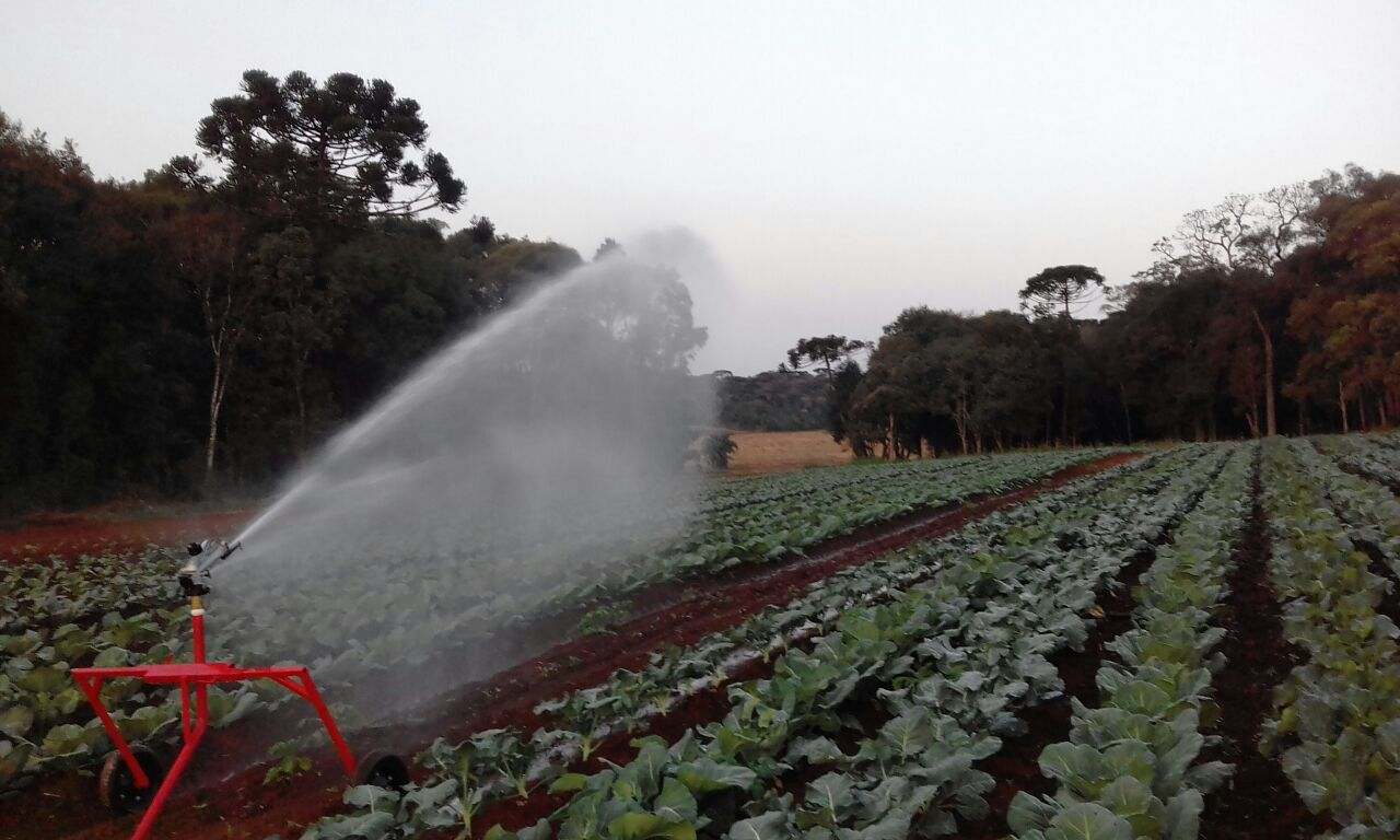 Irrigação garante prêmio de produtividade à cliente IRRIGAT 🏆