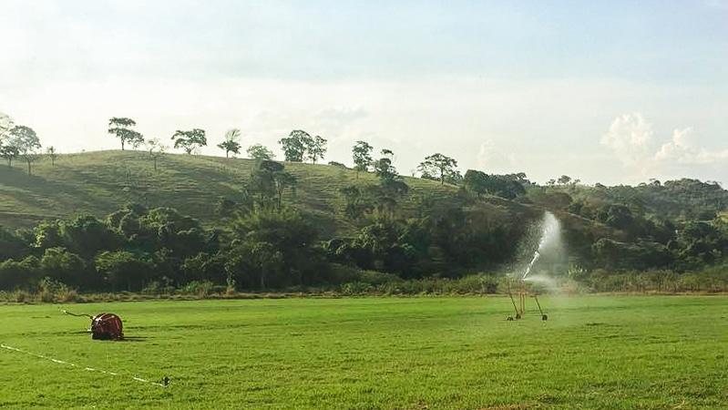Irrigação de pastagem por aspersão: qual tipo devo escolher?
