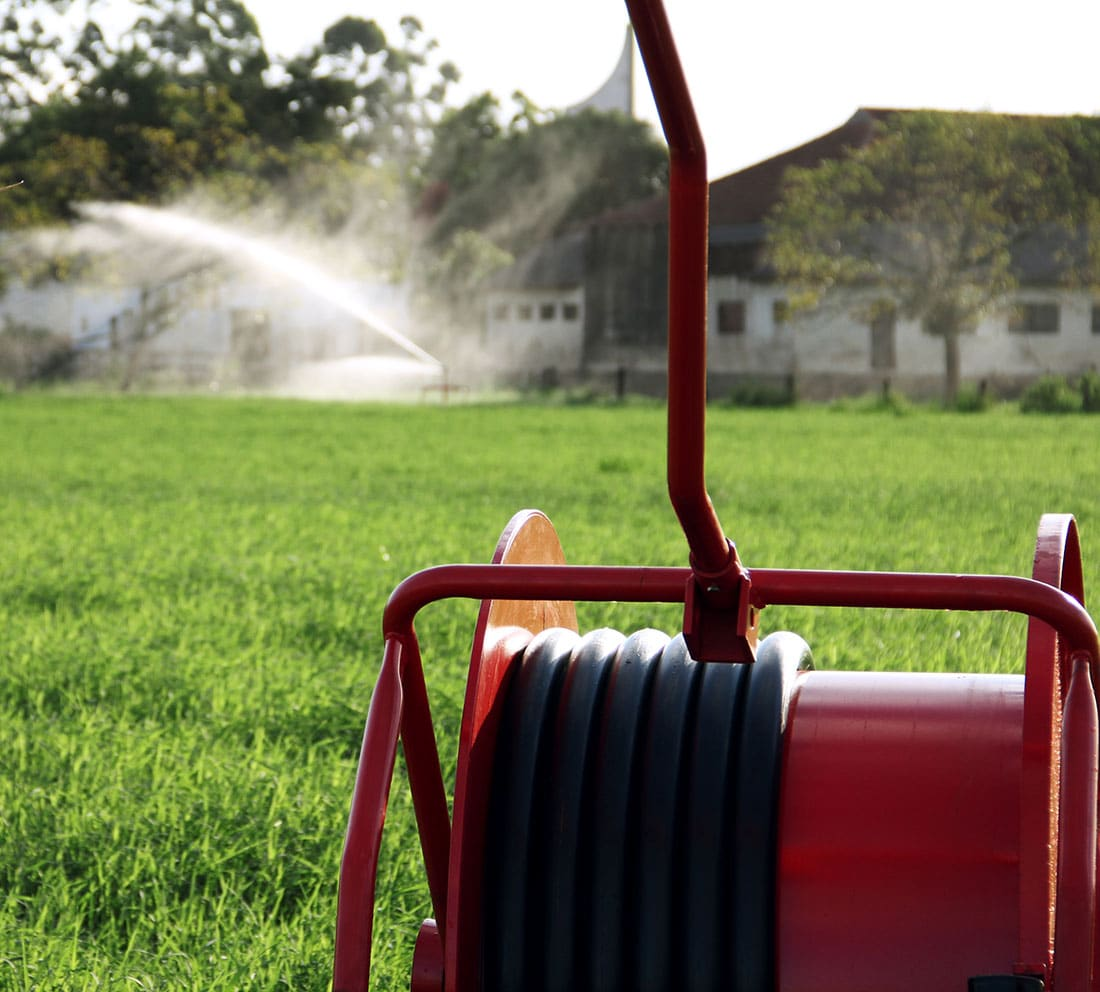 Porque irrigação de pasto vale à pena: na visão de um agrônomo