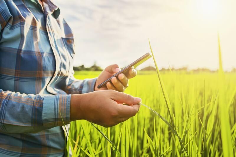 O que é agricultura de precisão? Conheça!