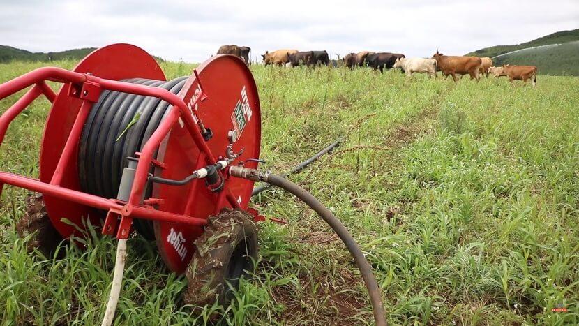 Carretel irrigação