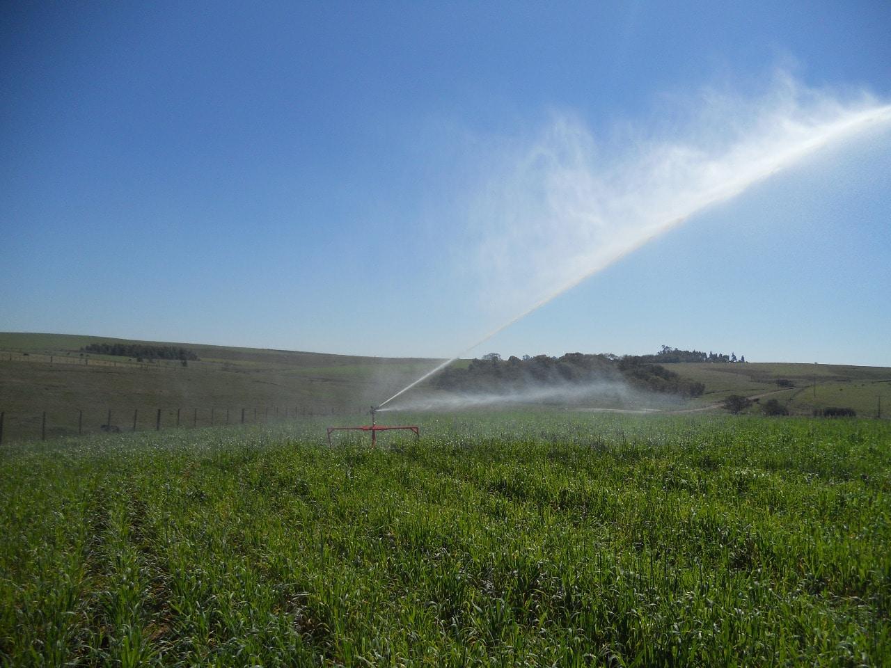 Irrigação: aumentando a eficiência
