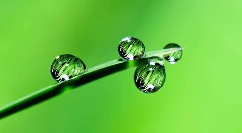 Consumo de água na irrigação