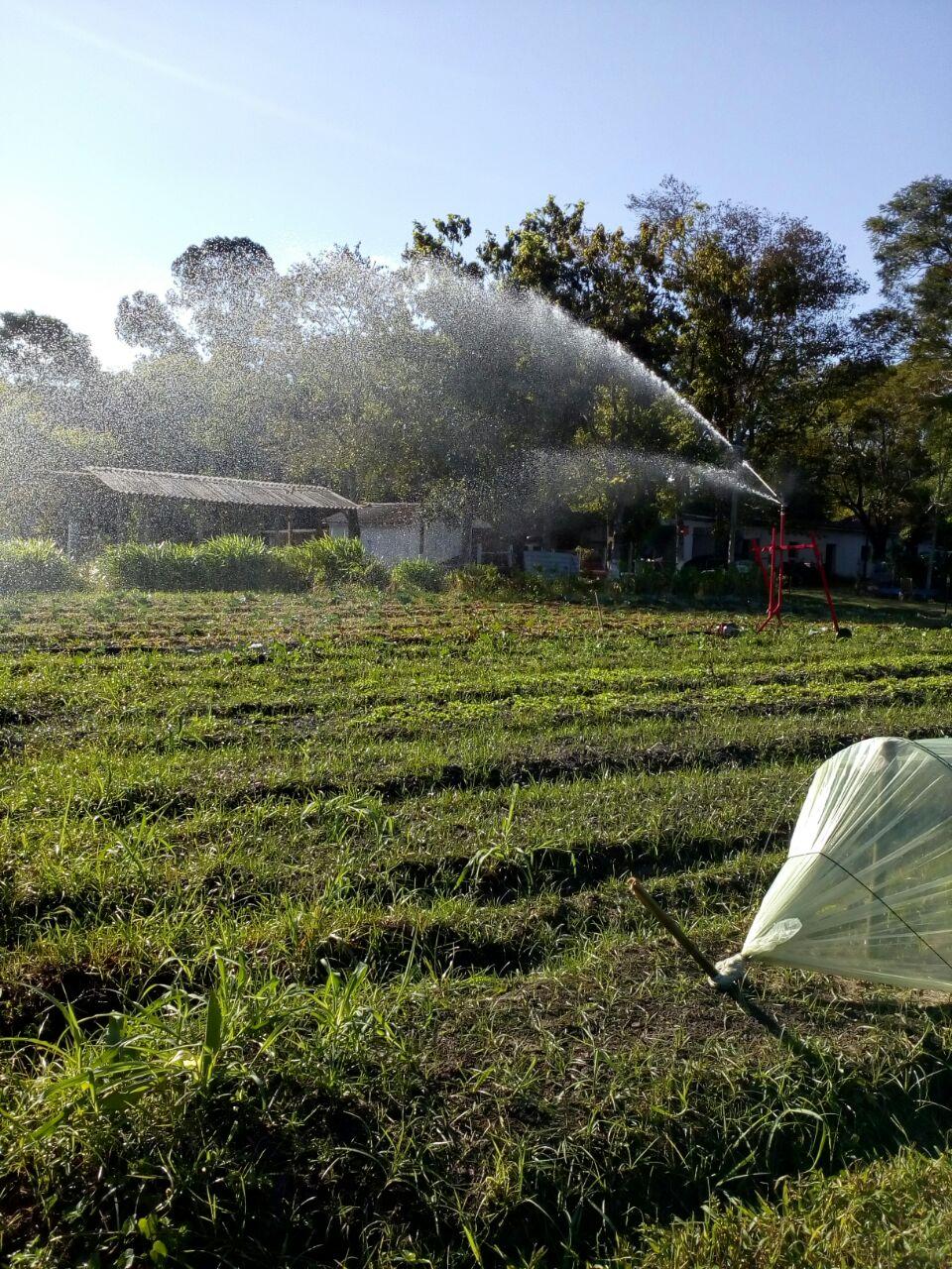 Irrigação como um complemento da chuva natural
