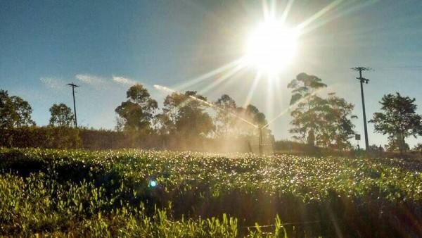 Irrigação de Lavouras