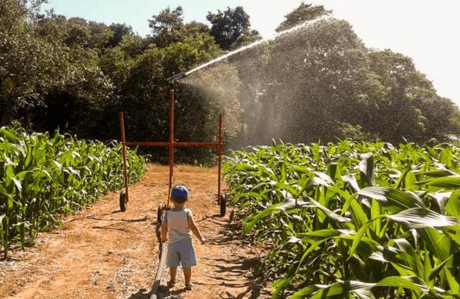 Irrigação IRRIGAT