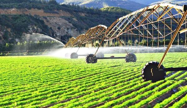 Irrigação Pivô central