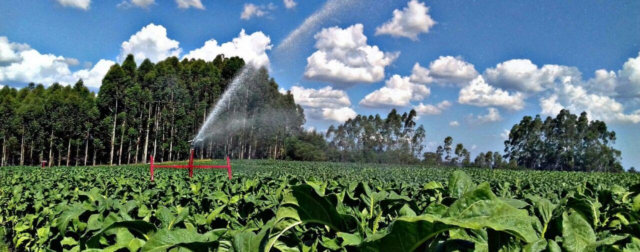 O segredo da mobilidade da irrigação IRRIGAT