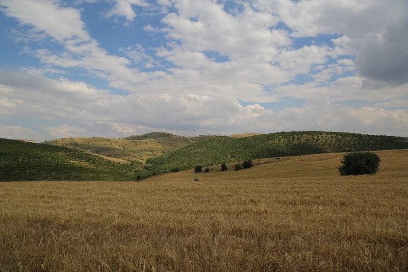 Terreno extenso com lavoura