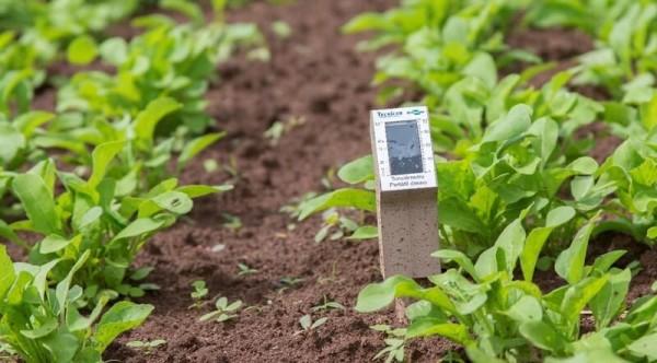 O sensor de umidade gera uma economia de até 50% no uso da água para irrigação