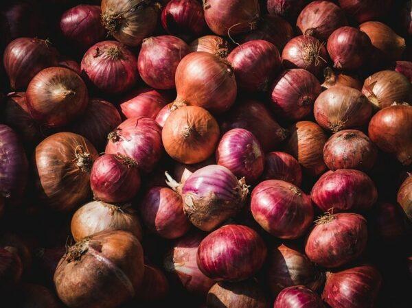 Conheça os principais tipos de hortaliças do Brasil